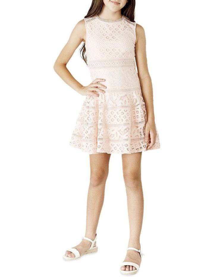 Elise Lace Dress 8-16 image 1