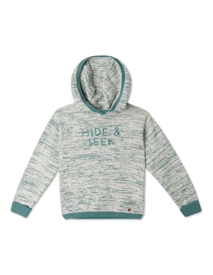 Knitted Jumper with Hood image 1