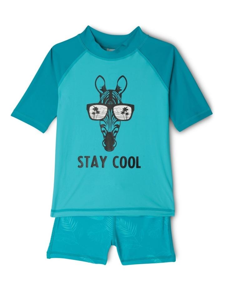 Stay Cool Zebra Set image 1
