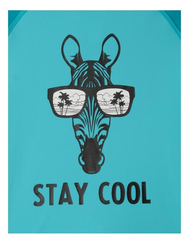 Stay Cool Zebra Set image 3