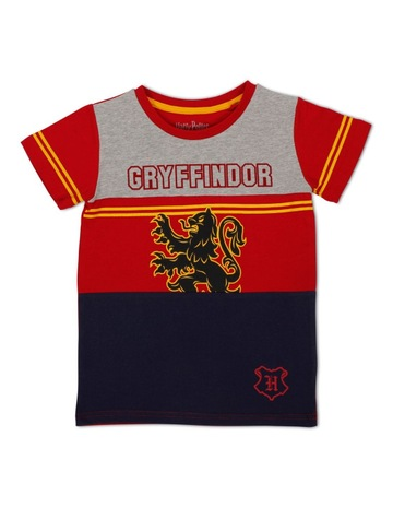 3004 Ravenclaw Quidditch T-Shirt Harry Potter Hufflepuff Gryffndor Slytherin Pla