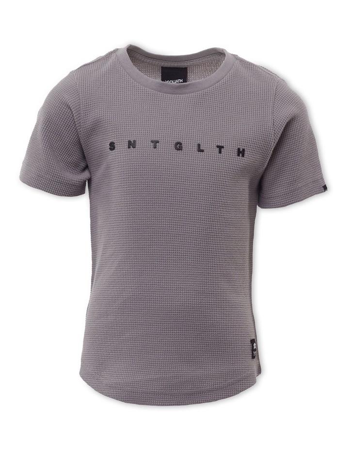 Phoenix T-Shirt Grey image 1