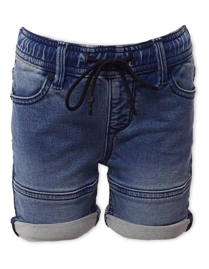Sands Denim Shorts image 1