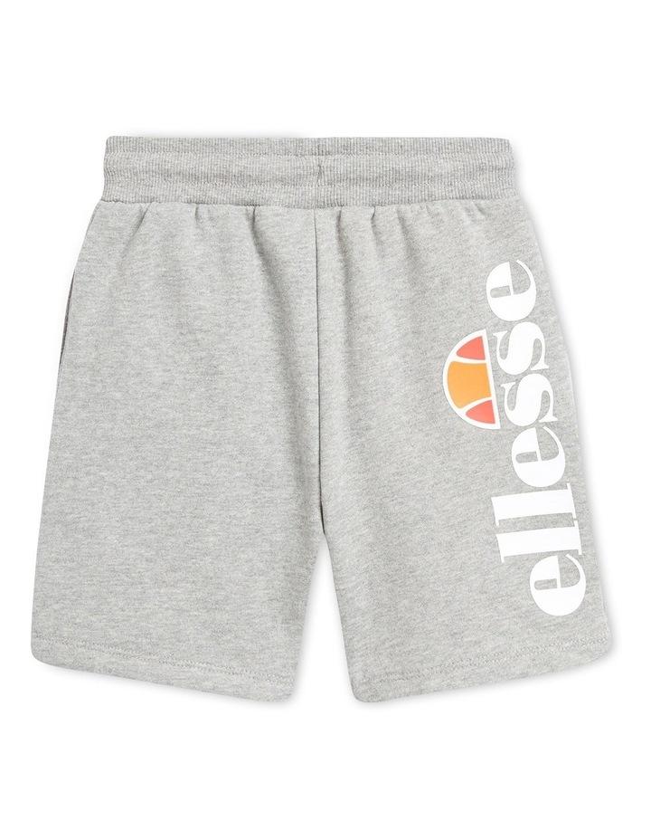 Toyle Sport Shorts Grey image 2