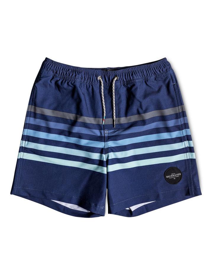 "Seasons 14"" - Swim Shorts image 1"