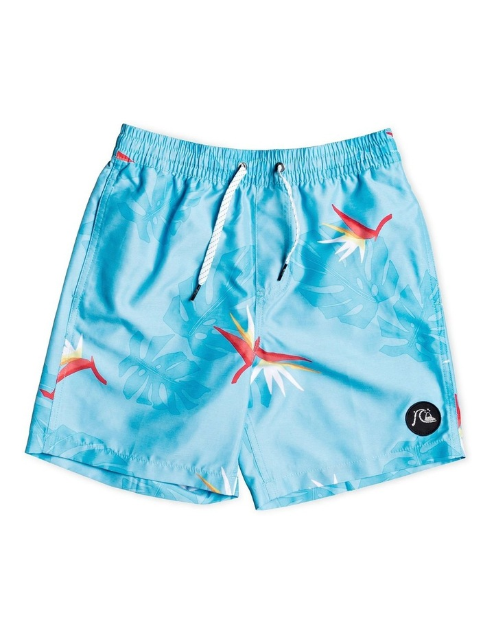 "No Destination 15"" - Swim Shorts for Boys 8-16 image 1"