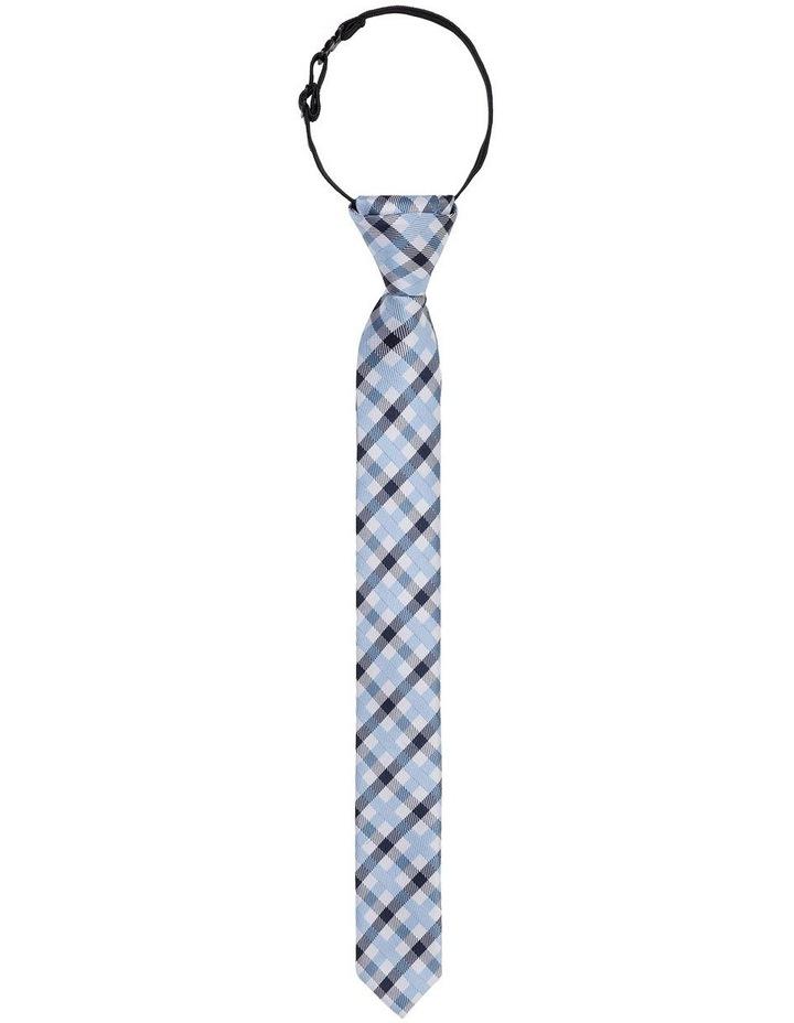 Check Tie image 1