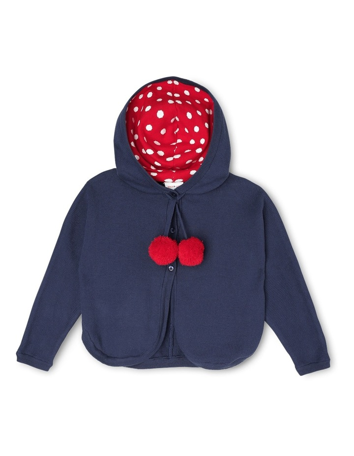 Olive Hooded Poncho With Spot Hood Lining & Pom Pom Ties image 1