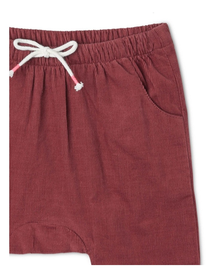 Charlie Corduroy Pant with Spot Lining image 3