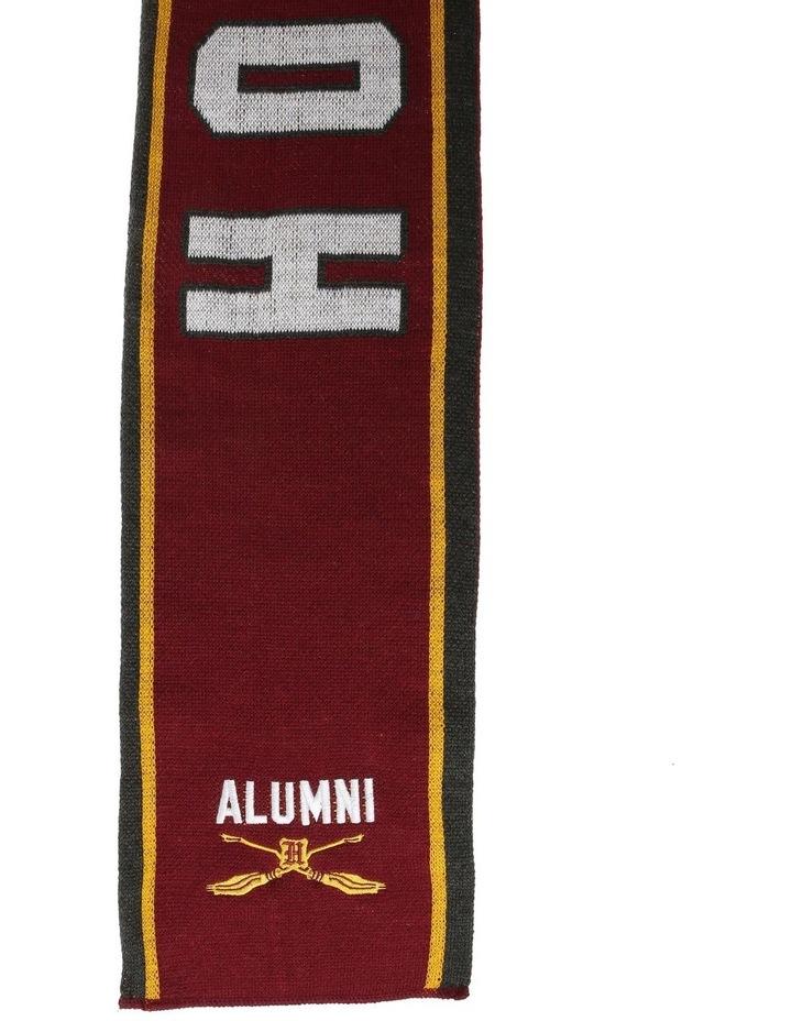 Children's Gryffindor Alumni Scarf image 2