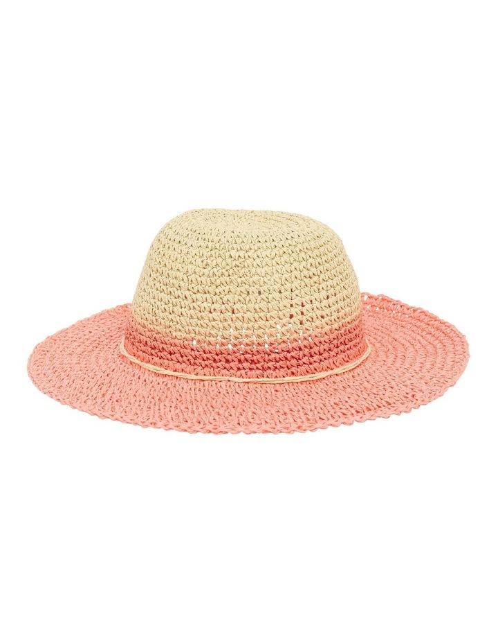 Dip-Dye Hat image 1