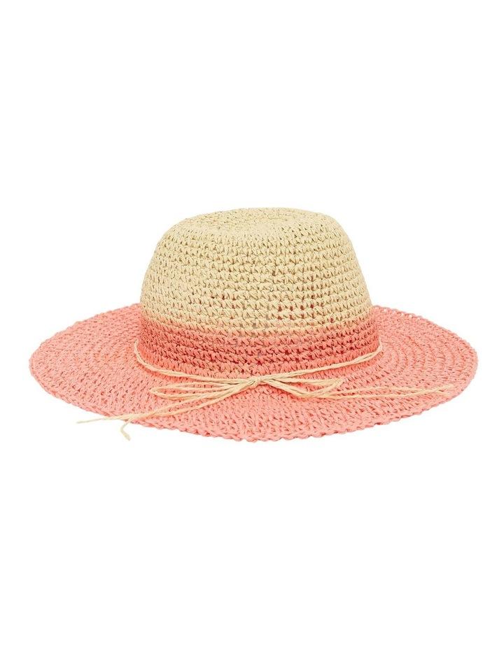 Dip-Dye Hat image 4