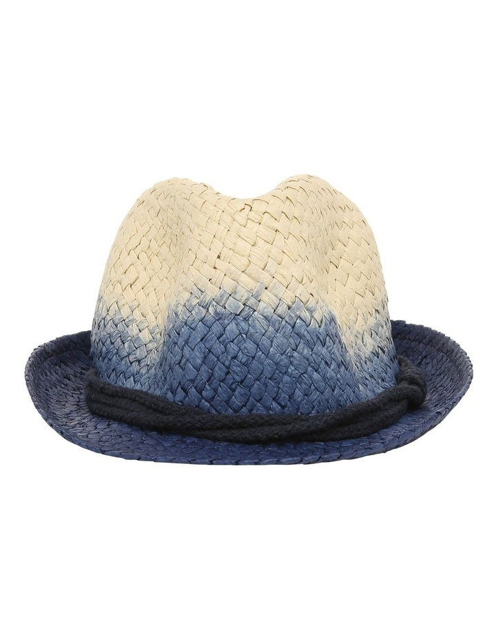Ombre Trilby Hat image 1