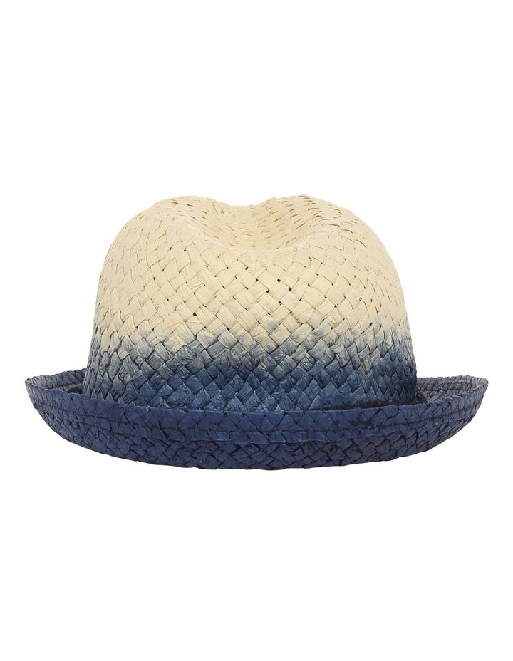 Ombre Trilby Hat image 3