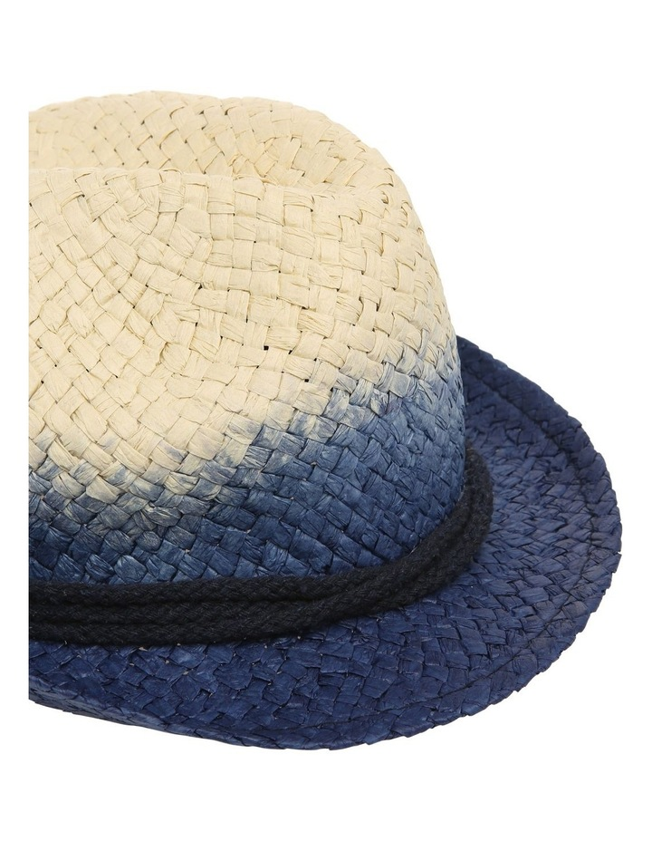 Ombre Trilby Hat image 4