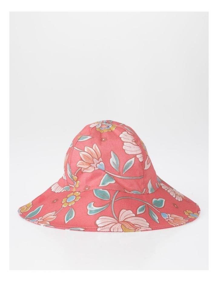 Broad Brim Hat image 1