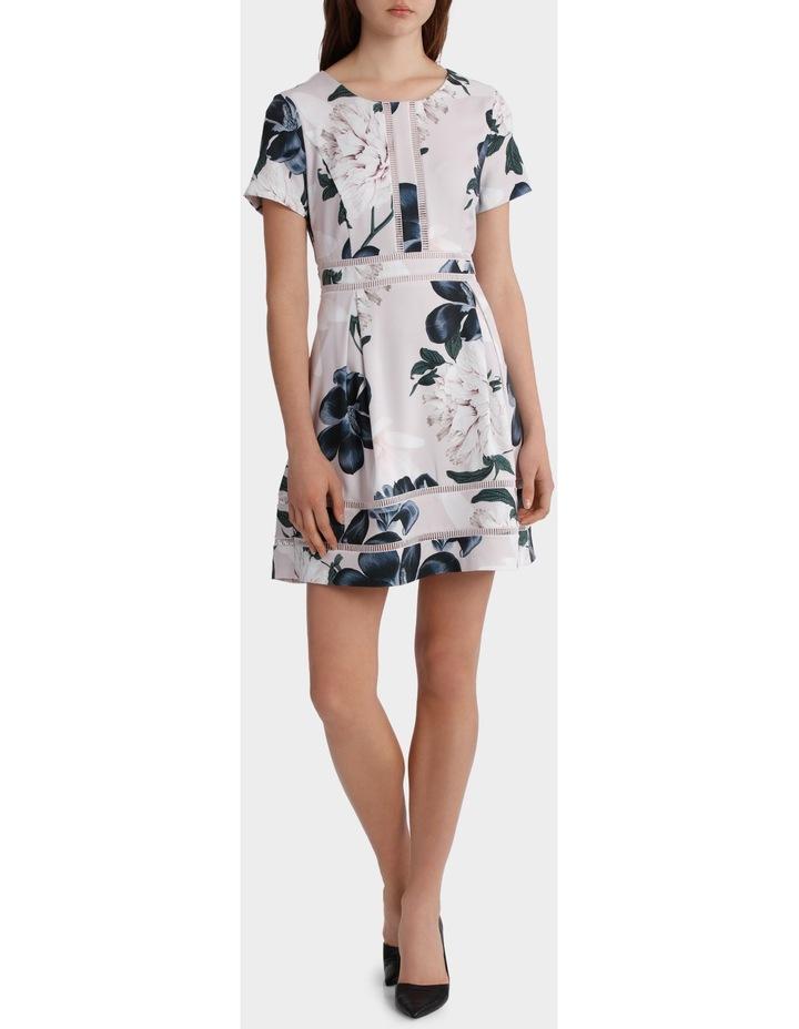 Printed Insert Tea Dress image 1