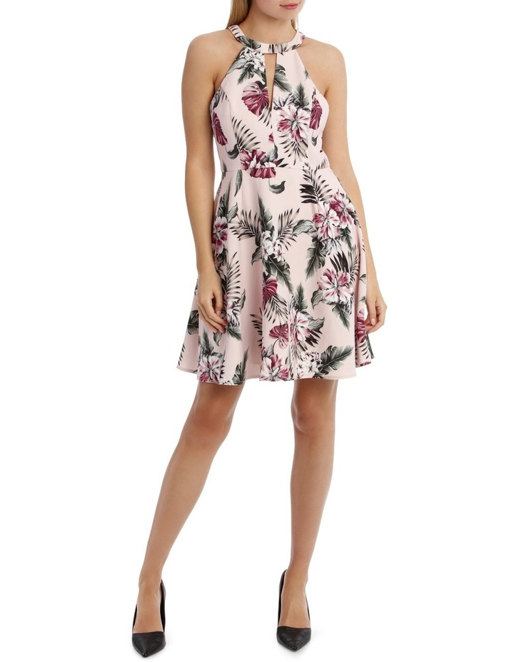 Tropical Print Skater Dress image 1