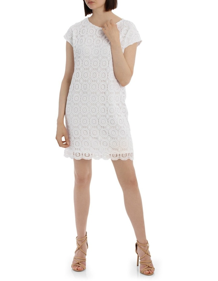 Lace Shift Dress image 1