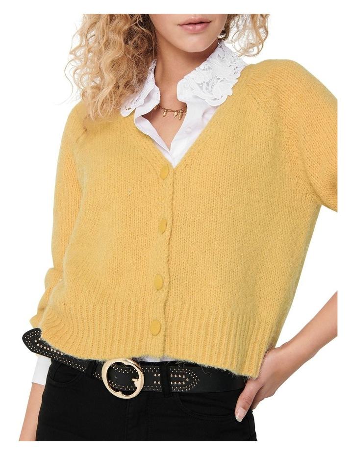 Alyssa Life Cardigan image 4