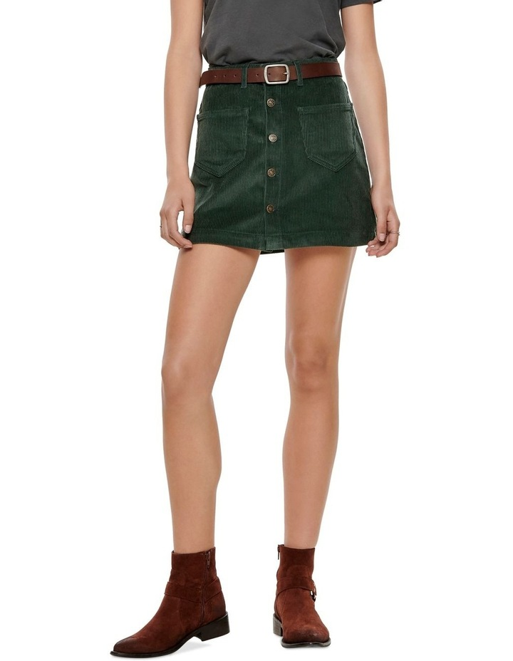 Amazing Cord Life Skirt image 1