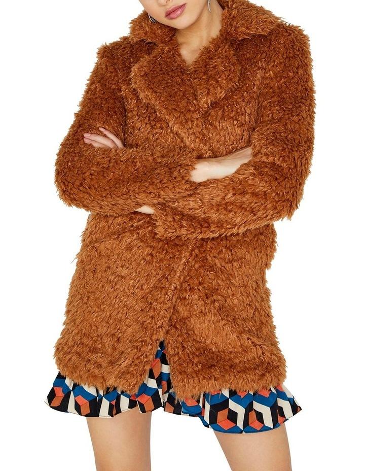 Teddy Coat image 1