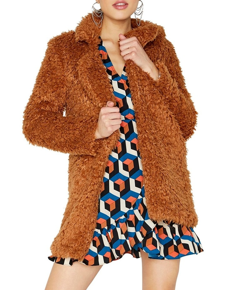 Teddy Coat image 3
