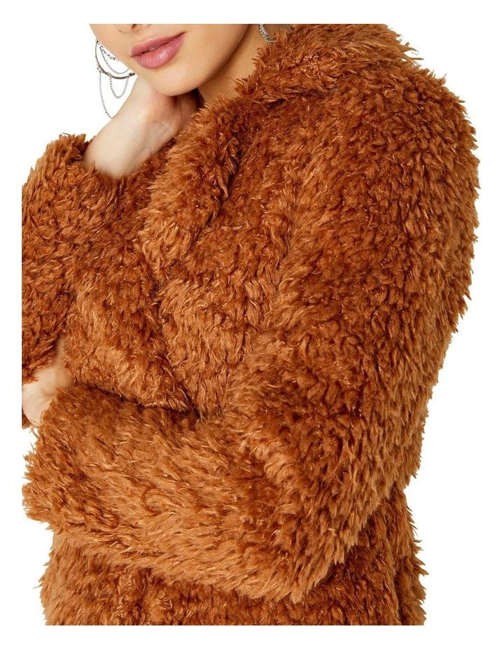 Teddy Coat image 4