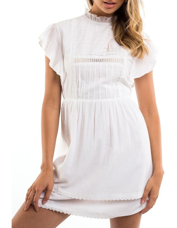 Ornamental Dress image 1