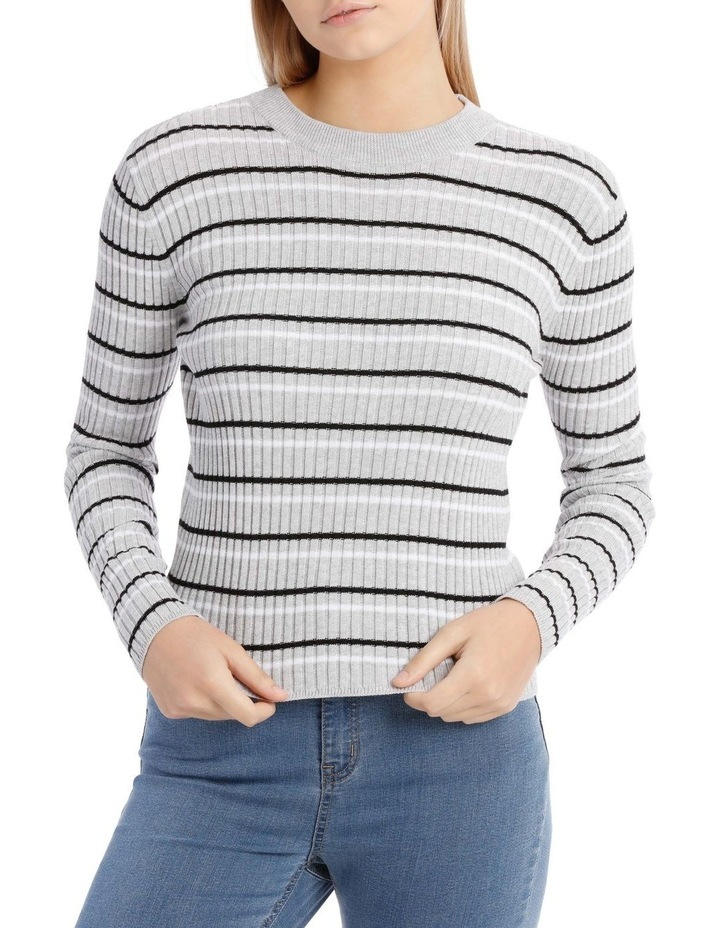 Fitted Stripe Roll Neck Jumper image 1