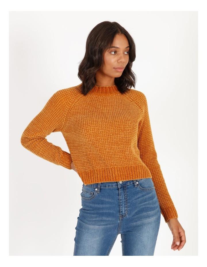Chenille Raglan Honeycomb Sleeve Knit image 1