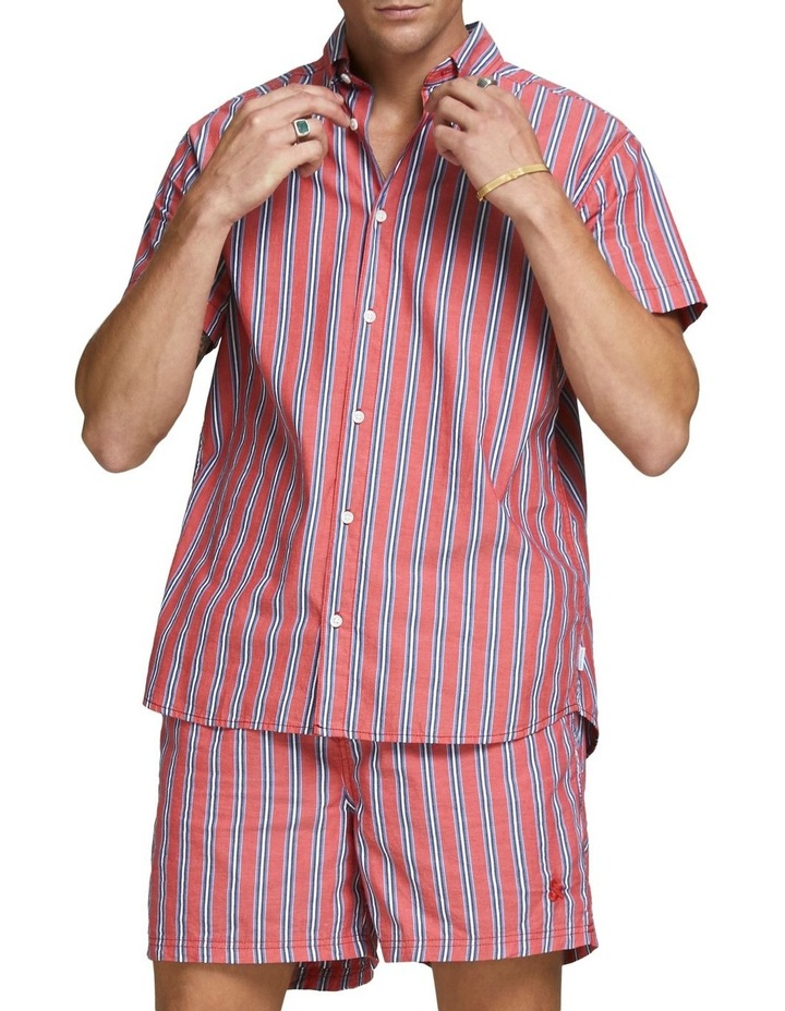 Kelly Stripe Shirt image 3