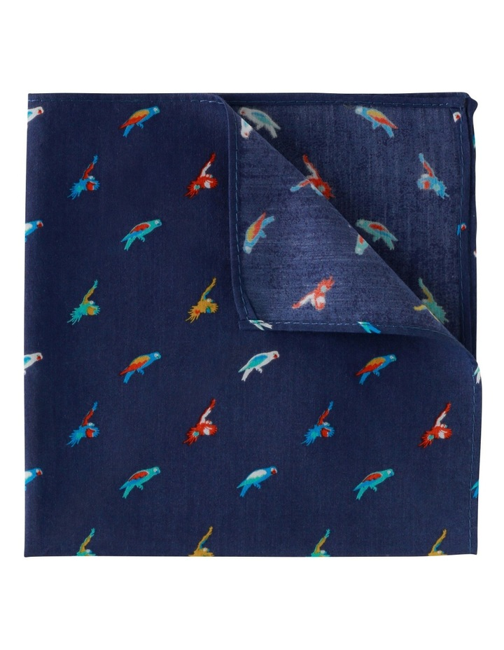 Pocket Squares image 1