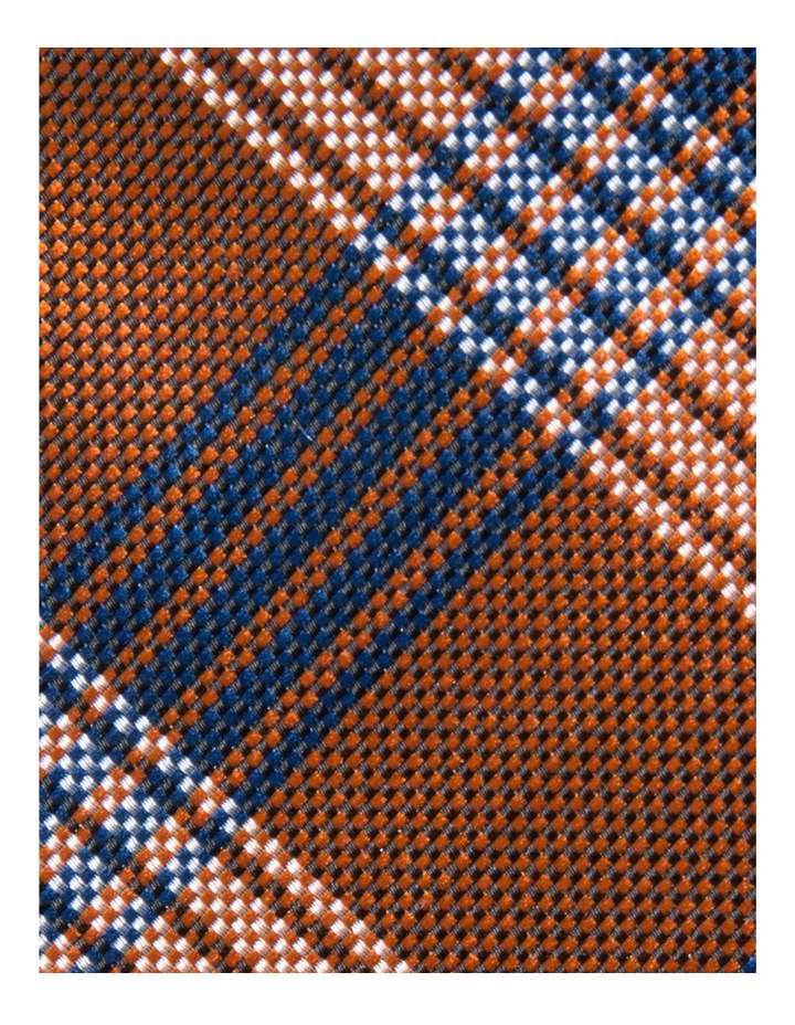 Poly Tie image 4