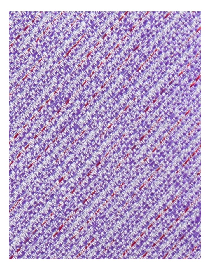 2 Pack Tie image 5
