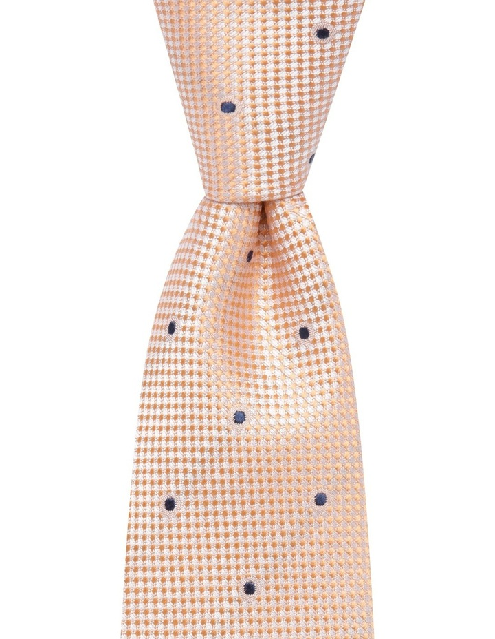 Solid Dot Tie Orange BLSTS18103 image 1