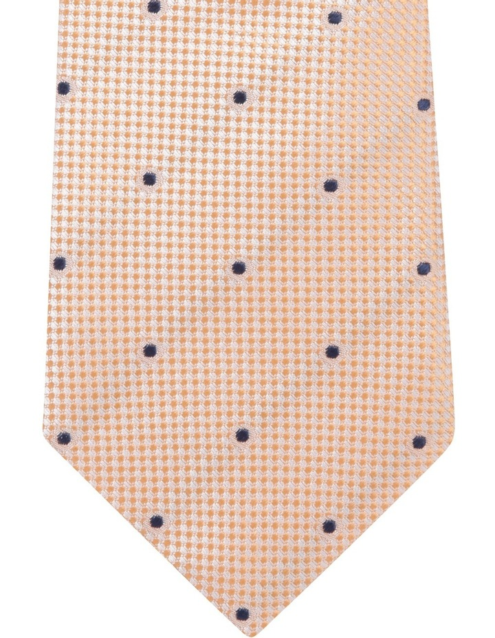 Solid Dot Tie Orange BLSTS18103 image 2