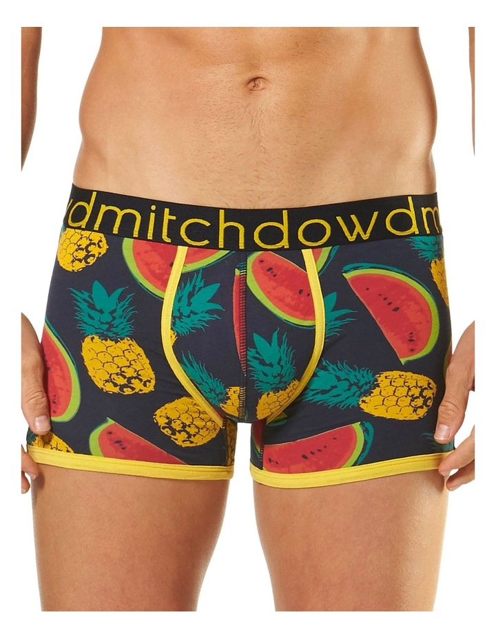 Pineapples & Melons Printed Fitted Trunk image 1