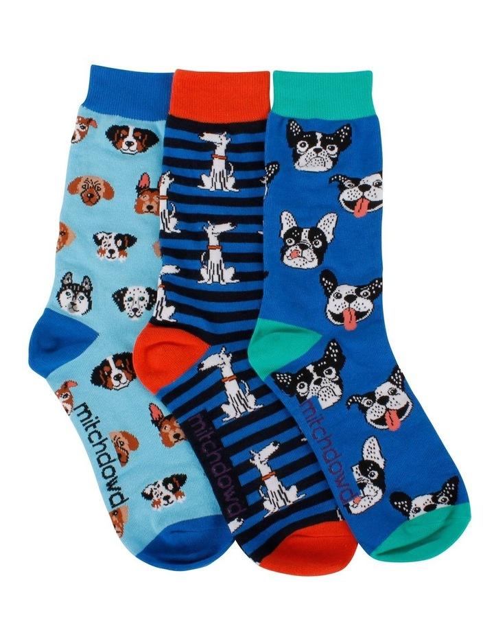 3 Pack Socks Gift Box - Animals image 1