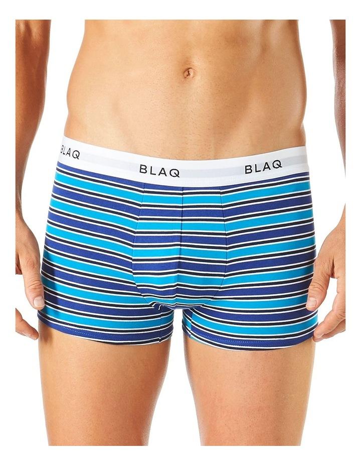 Fashion Trunk  - Stripe image 1