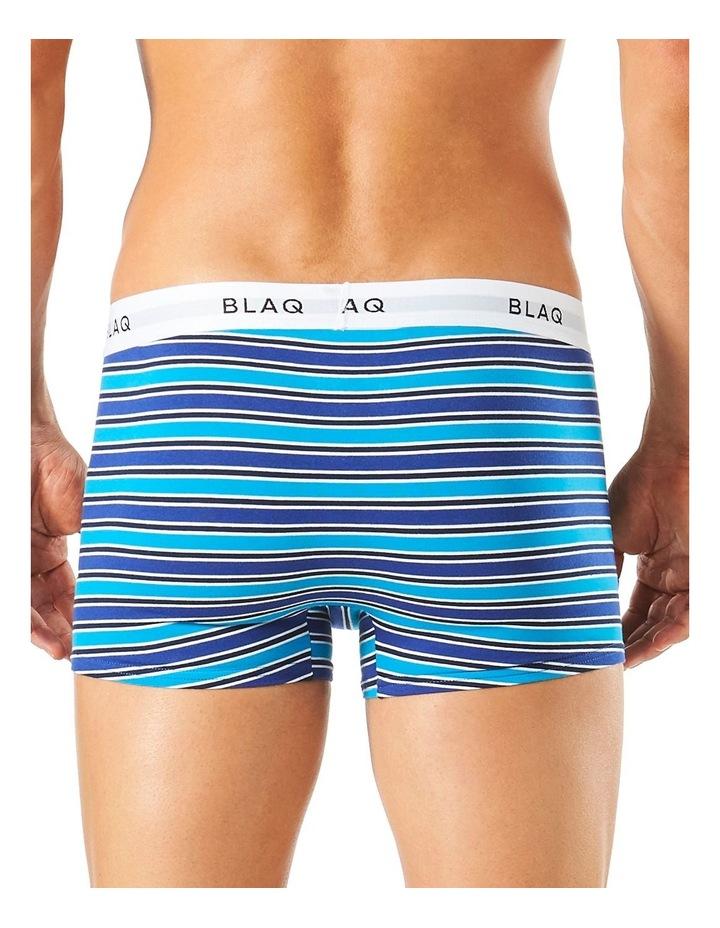 Fashion Trunk  - Stripe image 3