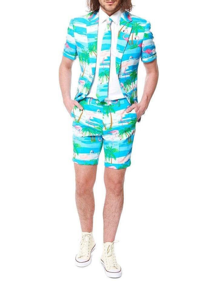 Summer Flaminguy Suit image 2