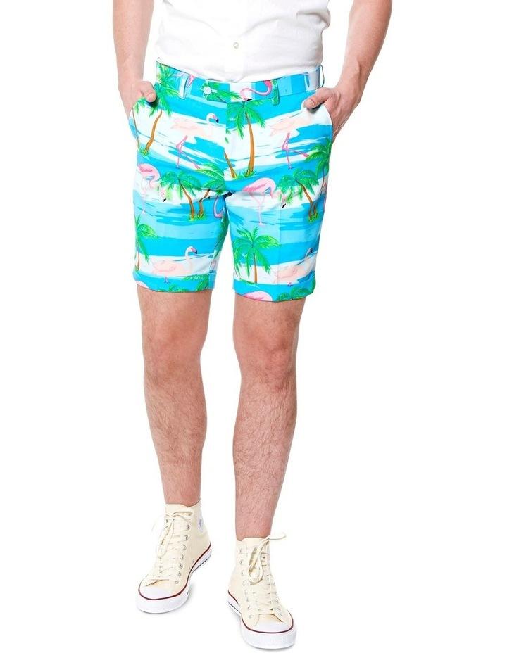 Summer Flaminguy Suit image 4