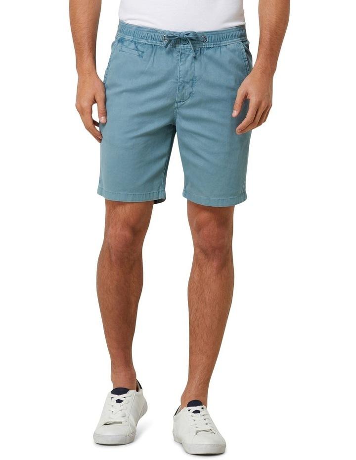 Sunscorched Chino Shorts image 1