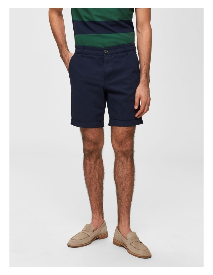 Paris Straight Shorts image 1