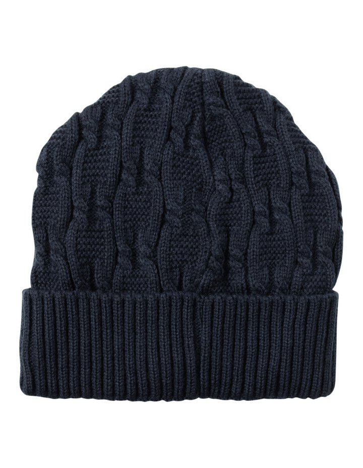 Trent Nathan Cable Knit Navy Beanie Gha1035m image 1