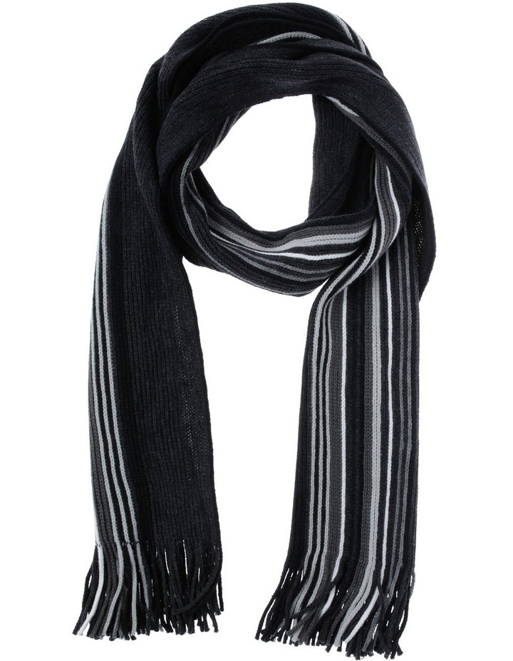 Stripe Rochelle Charcoal Scarf image 1