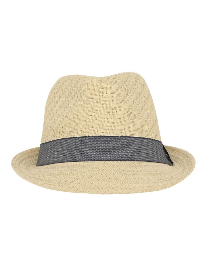 Jay Trilby image 1
