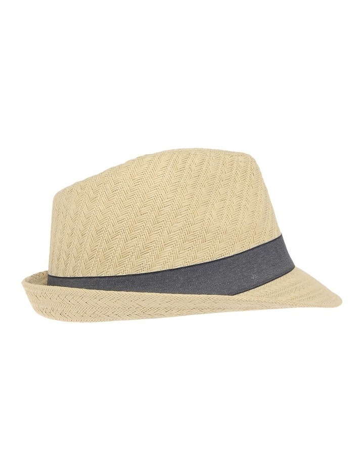 Jay Trilby image 2