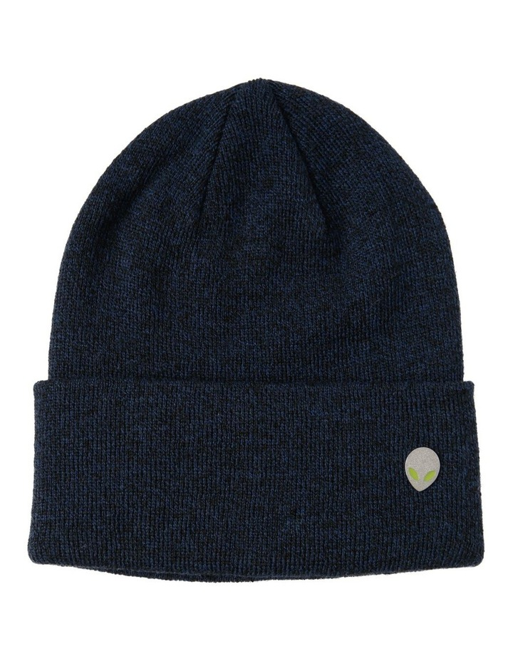 Beanie And Pin Set image 1